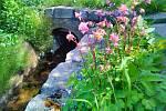 Rozkvetlá zahrada v Provodíně.