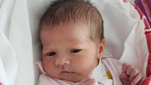 Rodičům Ladě Hanušové a Patriku Brabcovi z Mimoně se v sobotu 29. prosince ve 13:07 hodin narodila dcera Ema Brabcová. Měřila 50 cm a vážila 3,27 kg.
