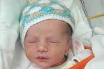 Rodičům Šárce Kujalové a Martinu Pernekrovi z Doks se v úterý 4. listopadu ve 14 hodin narodila dcera Thea Pernekrová. Měřila 46 cm a vážila 2,52 kg.