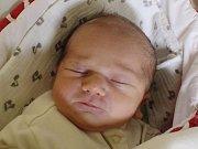 Rodičům Simoně Pátkové a Martinu Prokůpkovi ze Šluknova se v neděli 14. ledna ve 12:03 hodin narodila dcera Sára Prokůpková. Měřila 49 cm a vážila 3,12 kg.