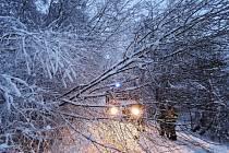 Vydatné sněžení se silným větrem zasáhlo Liberecký kraj.