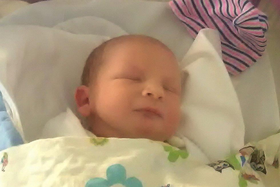 Mamince Pavlíně Ladislavové ze Cvikova se v pátek 22. ledna v 8:01 hodin narodil syn Tadeáš Ladislav. Měřil 50 cm a vážil 4,36 kg.