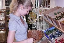 Konfety, tradiční ruské bonbony, má v nabídce ruský obchod.