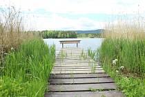 Za Hastrmanem krajinou Holanských rybníků.