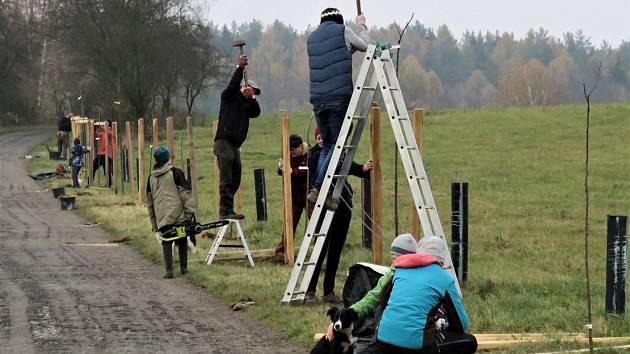 Nadace podpořila nové ovocné stromořadí v Ralsku.