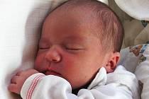 Mamince Zlatě Zvěřinové z Nového Boru se 15. srpna v 9:15 hodin narodila dcera Zlata Zvěřinová. Měřila 48 cm a vážila 3,25 kg.