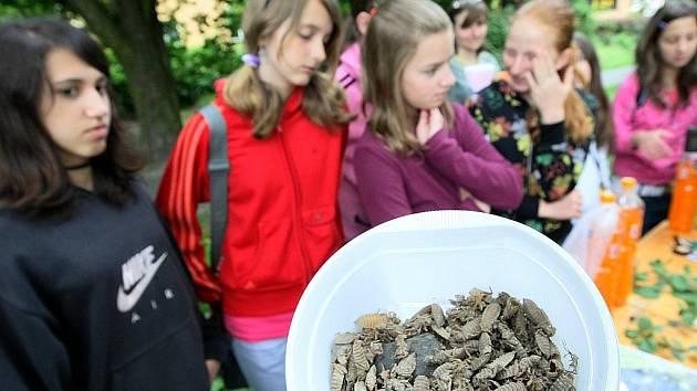 Žáci a studenti poznávali druhy dřevin, lesních plodů, bylin a živočichů.