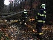 Už před sedmou hodinou vyjížděli hasiči ze Zákup ke spadlým stromům na silnici ze Zákup na Kamenici. Spadly čtyři vrostlé stromy, které strhly i telefonní dráty. Hasiči stromy rozřezali, stejně jako o hodinu později v případě spadlého stromu ve Velenicích