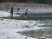 Kvůli letošnímu upouštění Máchova jezera se o měsíc zkrátí rybářská sezona, která skončí už posledního října.