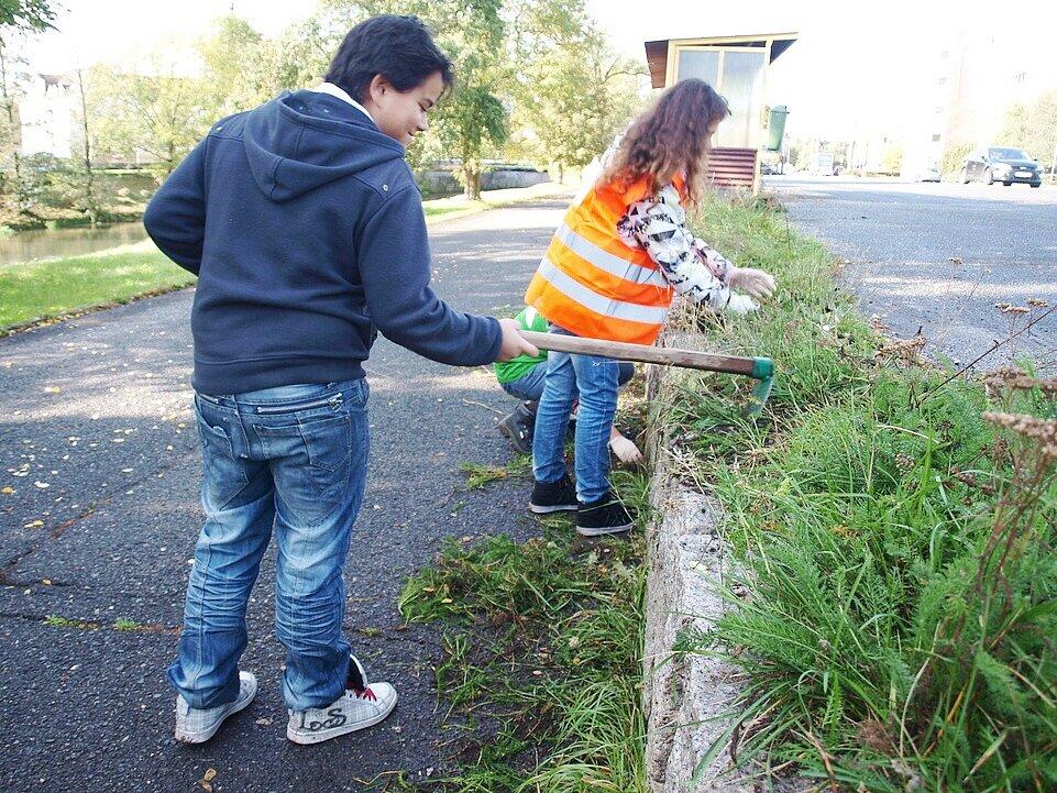 V České Lípě dobrovolníci čistili oba břehy řeky Ploučnice.