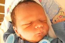 Mamince Daniele Tokárové z České Lípy se 20. září v 17:10 hodin narodil syn David Tokár. Měřil 50 cm a vážil 3,26 kg.