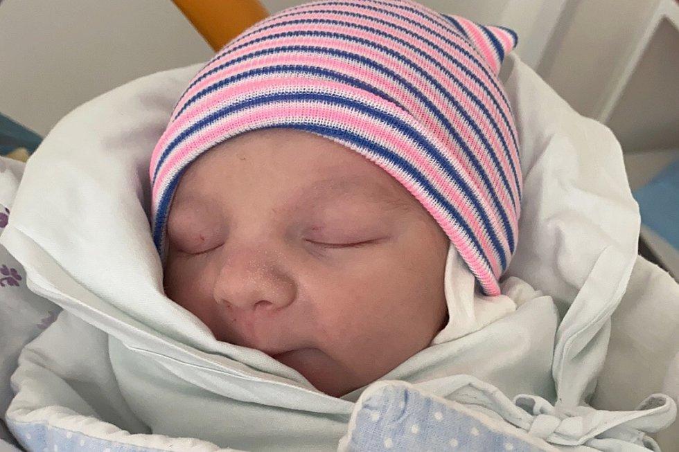 Rodičům Tereza Nemcové a Otakaru Hřebíkovi z Rumburku se ve čtvrtek 4. února ve 12:52 hodin narodil syn Kristián Hřebík. Měřil 49 cm a vážil 3,05 kg.