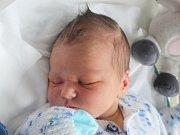 Rodičům Veronice Palušové a Petru Musilovi z České Lípy se v neděli 3. prosince ve 4:24 hodin narodil syn Petr Musil. Měřil 52 cm a vážil 3,66 kg.