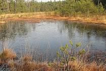 Národní přírodní památka Swamp.