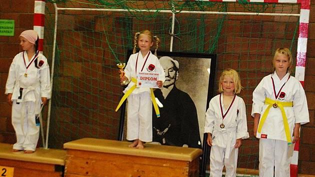 Za podpory příspěvkové organizace Sport  Česká Lípa se v okresním městě konal  Pohár mládeže v karate.
