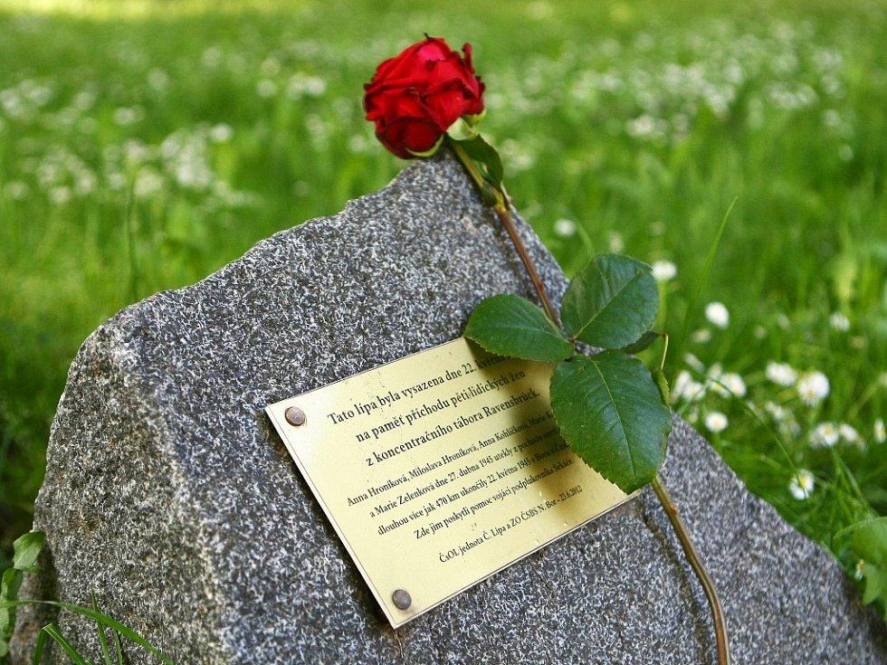 Pochod by se měl příští rok, k 70. výročí konce války, rozšířit o připomínku dalšího pochodu smrti, který šly jiné lidické ženy.
