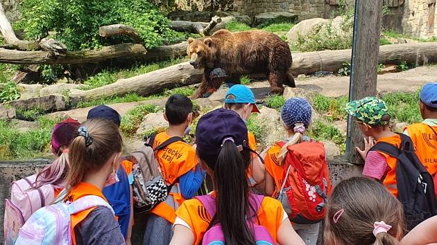 Školáky z Dubé zaujal hlavně medvěd.