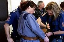 Ke stávajícímu tříletému trestu rok navrch nepodmíněně, tak zní verdikt Okresního soudu v České Lípě, který v pondělí jednal o dalším činu Ludmily Kovalevové.