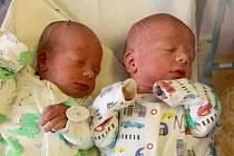Rodičům Lucii Zajícové a Petru Dorníkovi se ve středu 4. listopadu narodila dvojčata Štěpán a Vojta Dorníkovi. V 8:38 hodin přišel na svět syn Štěpán a o minutu později syn Vojta.