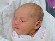 Rodičům Petře Syslové a Karlu Malátovi z Nového Boru se v pátek 18. srpna v 18:47 hodin narodila dcera Tereza Syslová. Měřila 48 cm a vážila 2,69 kg.