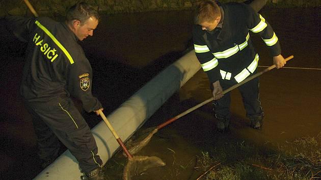 Pomocí podběráků a nafukovací norné stěny zachytávali kravařští hasiči olej v Bobřím potoce.