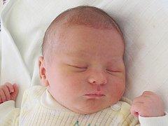 Mamince Martině Lněničkové z České Lípy se 26. srpna v 5:43 hodin narodila dcera Veronika Lněničková. Měřila 48 cm a vážila 3,15 kg.