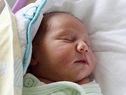 Rodičům Naděždě Pešavové a Zdeňkovi Pasovskému z Varnsdorfu se v sobotu 16. září v 18:50 hodin narodil syn Zdeněk Pešav. Měřil 48 cm a vážil 3,41 kg.