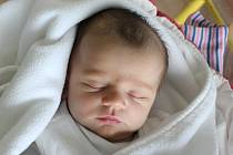 Rodičům Michaele Brožové a Jiřímu Šostkovi z České Lípy se v pátek 11. května v 16:54 hodin narodila dcera Andrea Šostková. Měřila 52 cm a vážila 4,01 kg.