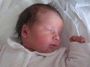 Rodičům Kateřině Neumannové a Martinu Fryčovi z Nového Boru se v neděli 13. listopadu ve 22:41 hodin narodila dcera Veronika Fryčová. Měřila 48 cm a vážila 3 kg.