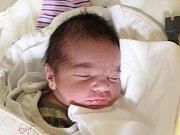 Rodičům Miroslavě Tinhoferové a Blažeji Zagorovi z Novin pod Ralskem se ve čtvrtek 8. listopadu narodil syn Brian Zagora. Měřil 51 cm a vážil 3,64 kg.