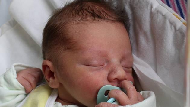 Rodičům Veronice Ehrlichové a Vítu Hřivnovi z České Lípy se v neděli 4. února v 8:07 hodin narodil syn Vít Hřivna. Měřil 50 cm a vážil 3,37 kg.