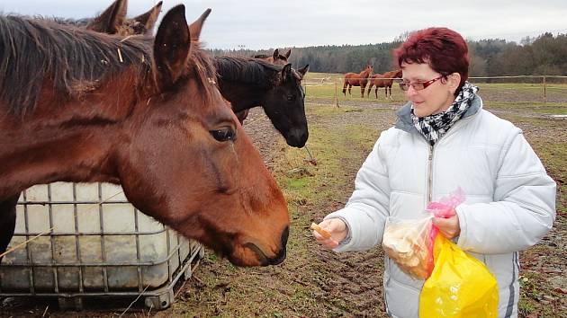 Láska ke zvířatům provází učitelku Janu Maškovou celý život. Na dubské škole založila chovatelský kroužek, který čítá pětadvacet druhů zvířat.