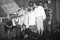 Divadelní spolek Havlíček