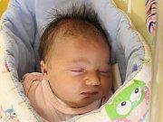 Rodičům Michaele Chýnové a Jiřímu Kunstovi ze Starého Šachova se v pondělí 10. prosince v 9:20 hodin narodila dcera Štěpánka Kunstová. Měřila 53 cm a vážila 4,23 kg.