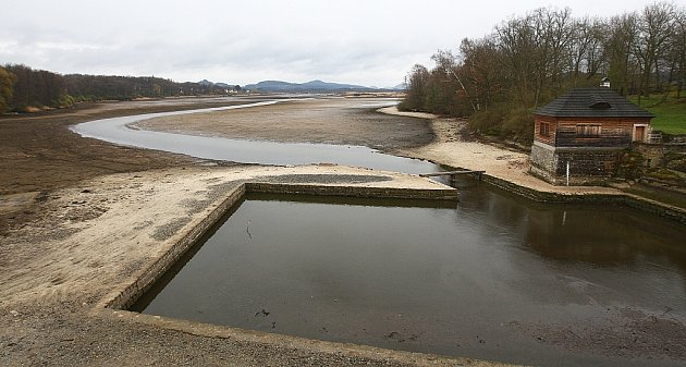 Bez vody je nyní Novozámecký rybník vZahrádkách uČeské Lípy. Doplatily na to tisíce škeblí, které uhynuly.