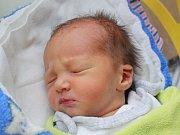 Rodičům Daniele Lachké a Danielu Zimovi z Ploužnice se v úterý 28. listopadu v 9:38 hodin narodil syn Adam Lachký. Vážil 2,47 kg.