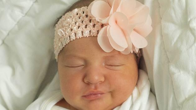 Rodičům Dině Jóniové a Janu Svobodovi z České Lípy se v pátek 27. dubna v 1:37 hodin narodila dcera Dájen Jóniová. Měřila 51 cm a vážila 3,49 kg.