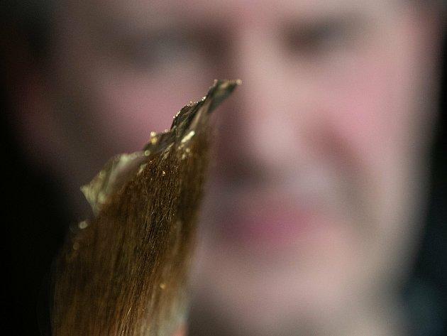 Zlaté plátky jsou tak tenké, že při práci Václav Hodinka skoro ani nedýchá. Plátky přichytí pomocí vazelíny na zštětec zveverčích chlupů.