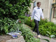Skleněná zahrada v Novém Boru.