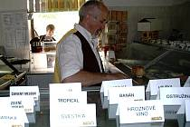 U Schwarzkopfa ve Stráži pod Ralskem mají v sortimentu, který se časem obměňuje, celkem přes dvě stě druhů zmrzliny.