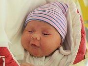 Rodičům Nikole Kopečné a Martinu Pořízovi z České Lípy se ve čtvrtek 15. března v 18:17 hodin narodila dcera Sofie Pořízová. Měřila 51 cm a vážila 3,78 kg.