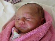 Rodičům Ivoně Prokůpkové a Jaroslavu Čulíkovi z Holan se v pondělí 25. září v 8:45 hodin narodila dcera Vanessa Čulíková. Měřila 47 cm a vážila 2,96 kg.