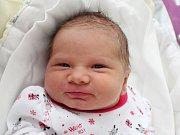 Rodičům Pavlíně a Josefovi Tancošovým z Janova se v pondělí 31. prosince v 18:12 hodin narodila dcera Jasemin Tancošová. Měřila 50 cm a vážila 3,83 kg.