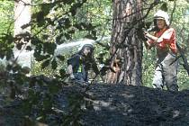 Období lesních požárů začíná. Snímek z loňského roku zachycuje práci hasičů při likvidaci požáru lesa v Tuhani.