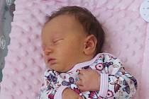 Rodičům Lucii Pastvové Vávrové a Tomášovi Pastvovi z Vetlé se v neděli 27. září ve 13:54 hodin narodila dcera Karolína Pastvová. Měřila 50 cm a vážila 3,2 kg.