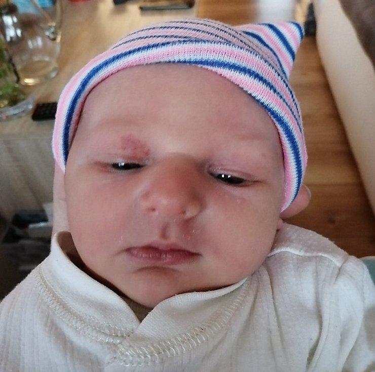 Rodičům Barboře a Martinovi Beckerovým z Nového Boru se v sobotu 7. listopadu v 15:22 hodin narodila dcera Vendulka. Měřila 50 cm a vážila 3,72 kg.