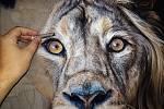 Aukce obrazu lva, namalovaného pastelovými barvami na dřevo, vynesla 33 000 korun.