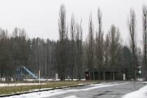 Bazénu padne za oběť přibližně padesátka vzrostlých stromů.