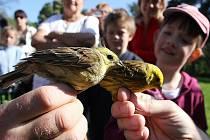 Akce Vítání ptačího zpěvu se koná na desítkách míst v celé republice.