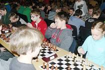 Českolipsko zastupovalo v různých kategoriích 10 šachistů.